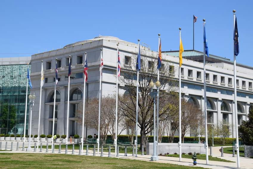 What is Arbitrary and Capricious in Government Contracting